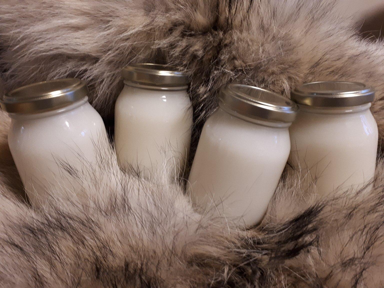 Уникальный витаминный состав медвежьего жира