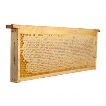 Алтайский мед в сотах, 1 кг